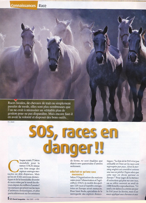2009-mag-races danger