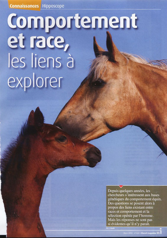 2010_mag_comportement et race