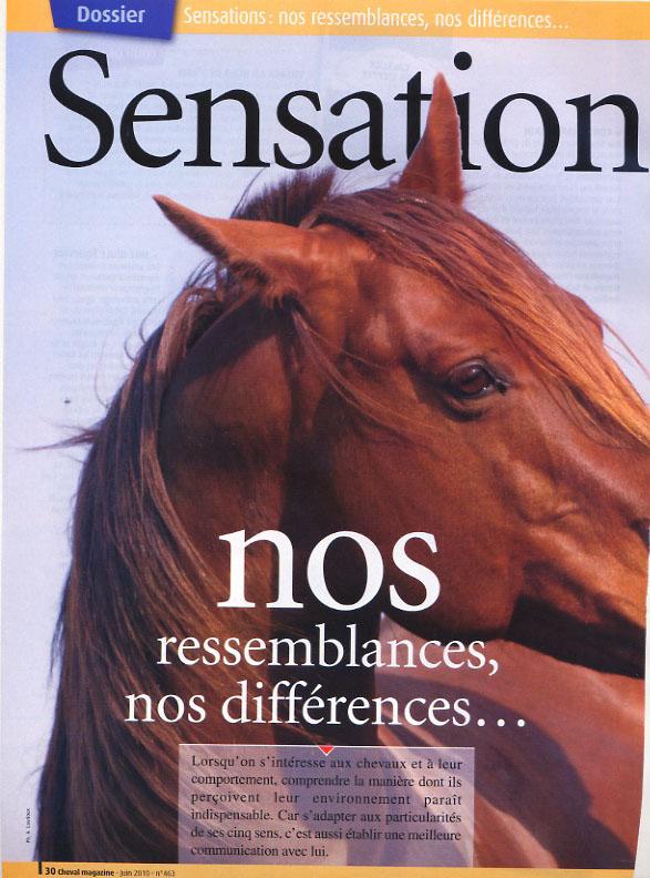 2010_mag_sensation