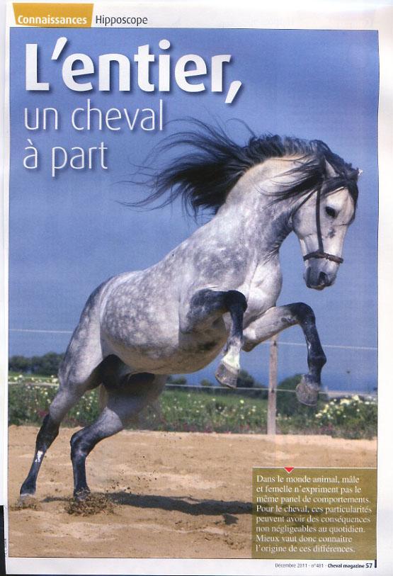 2011_mag_entier