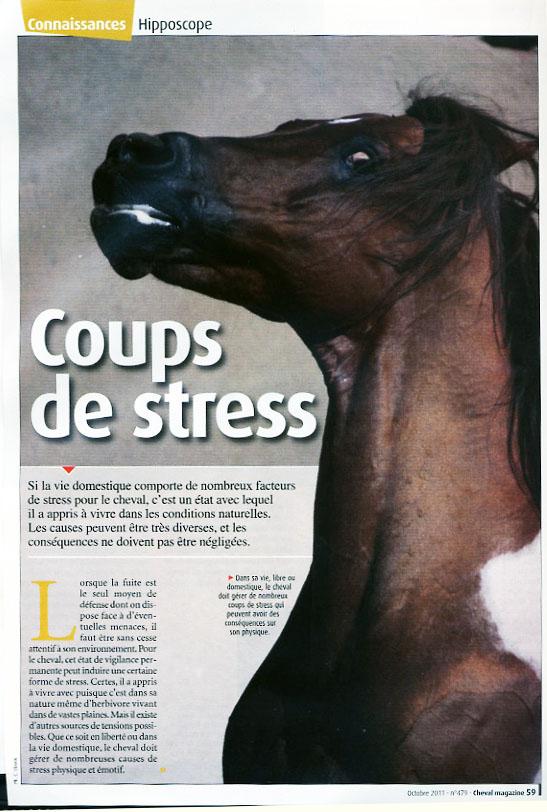 2011_mag_stress