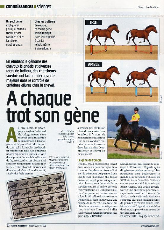 2013_mag_gene trot