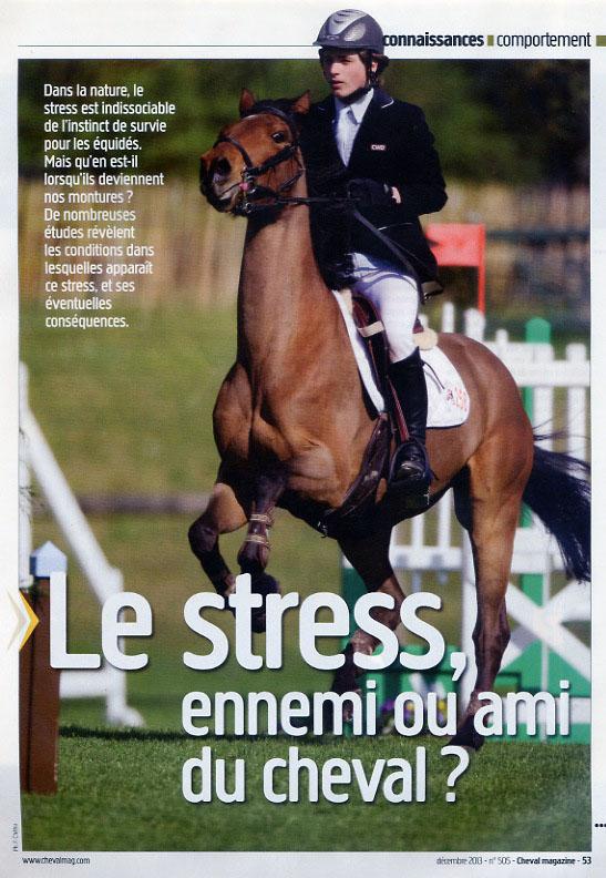 2013_mag_stress