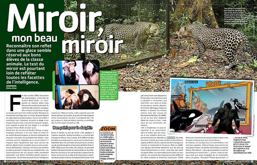 svjhs_miroir_v2-1